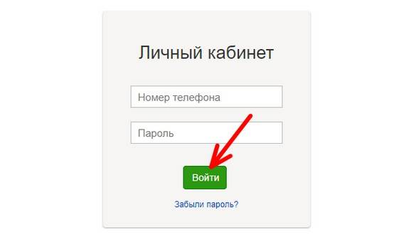 avtorizatsiya-3.jpg