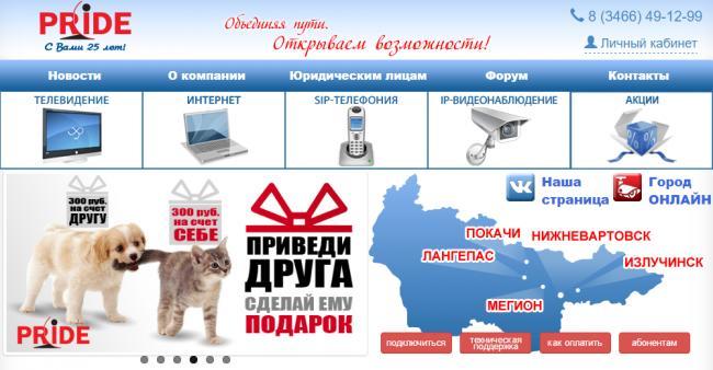 pride-net-site.png