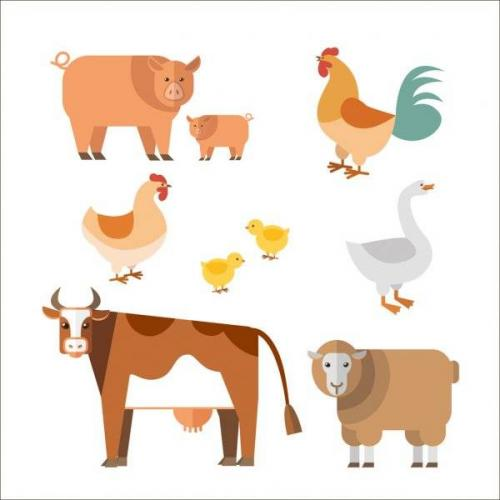 depositphotos_76987795-stock-illustration-farm-animals.jpg