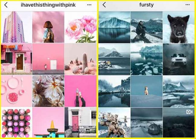 cvetovaja-shema-v-oformlenii-profilja-instagram.jpg