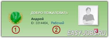 registratciya-na-seosprint-status-rabochij.jpg