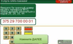 SHag-10-300x182.jpg