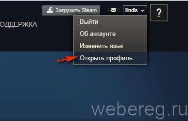steam-9-387x249.jpg