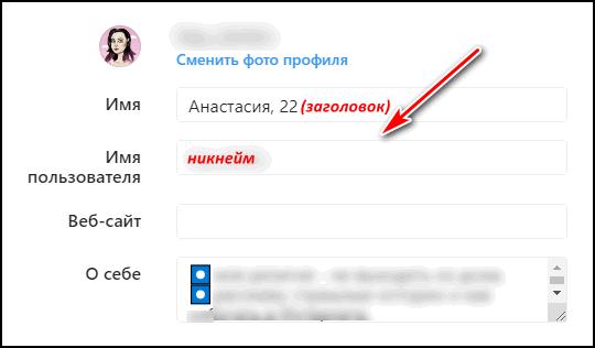 zagolovok-i-nikneym-s-instagrama.png