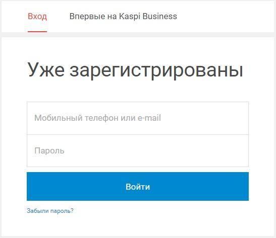 Kaspi-Business.jpg