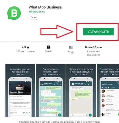 skachat-whatsapp-business.png