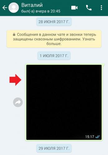 kak-otpravit-fajl-s-whatsapp-na-elektronnuyu-pochtu-ili-naoborot2.png