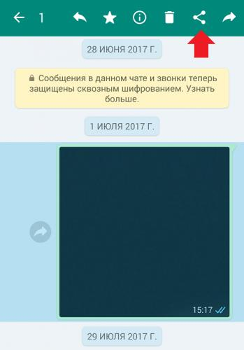 kak-otpravit-fajl-s-whatsapp-na-elektronnuyu-pochtu-ili-naoborot3.png