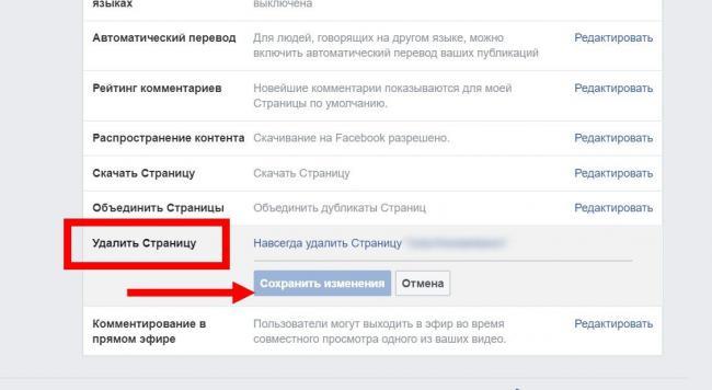 FB_ydalit-biznes-stranitsy5_result.jpg