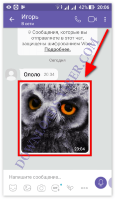 how-to-send-a-file-from-email-to-viber-screenshot-03-231x400.png