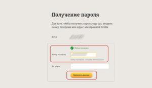 Proverit-telefon-300x174.jpg