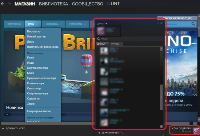 Otkryitie-spiska-druzey-v-prilozhenii-Steam.png