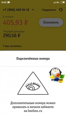 Podklyuchennye-nomera-bilajn.png
