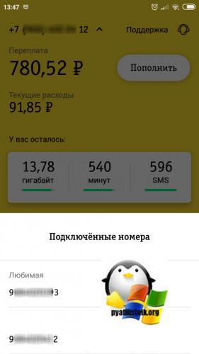 Dopolnitelnyj-nomer-v-mobilnom-prilozhenii-bilajn.png