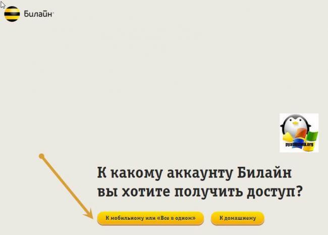 Dobavlenie-nomera-bilajn-04.jpg