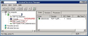 Terminal-Services-Manager-300x123.jpg