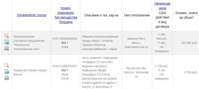 ofitsialnyj-sajt-torgi-gov-ru-torgigov-6.jpg