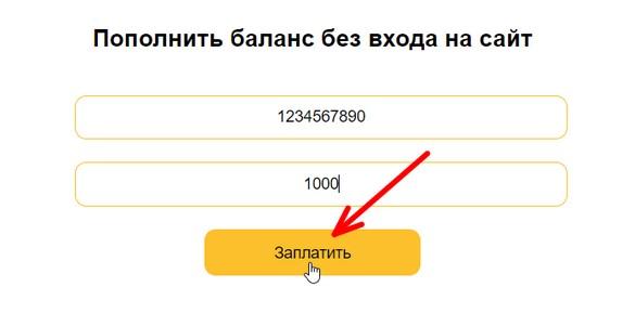 oplata-bez-registratsii.jpg