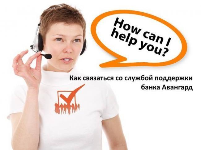 avangard-support.jpg